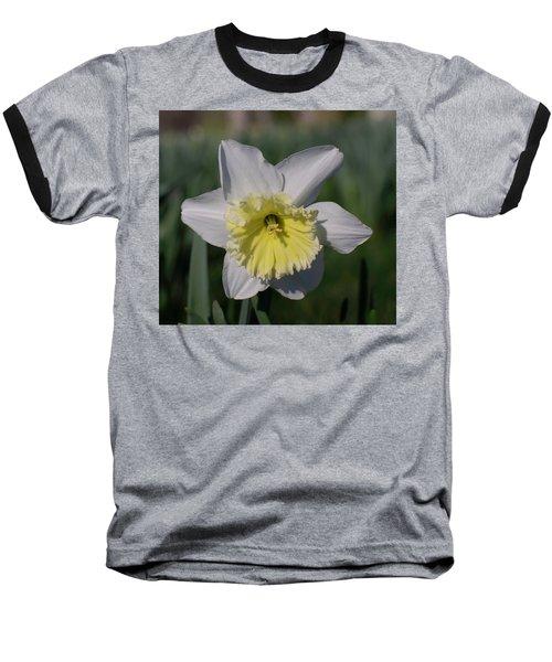 White And Yellow Daffodil Baseball T-Shirt