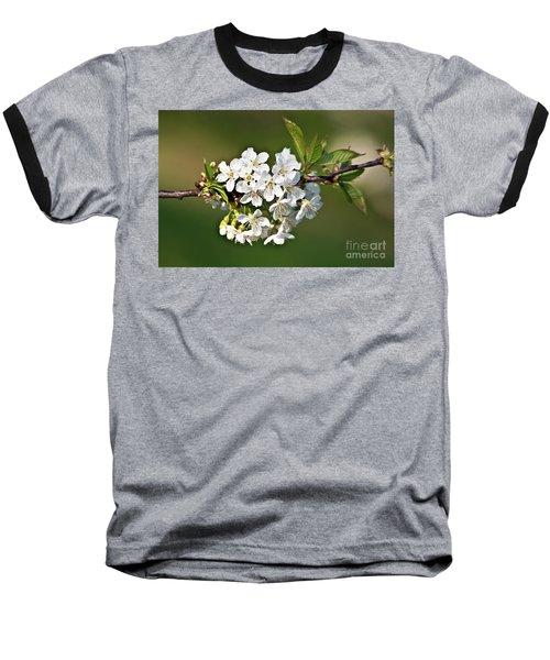White Apple Blossoms Baseball T-Shirt