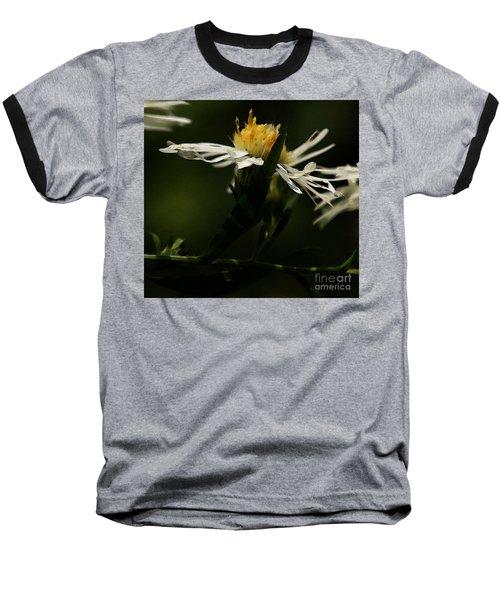 White Aster Baseball T-Shirt