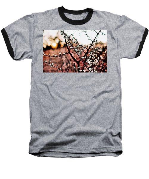White Blossom Branches Baseball T-Shirt by Carol Crisafi