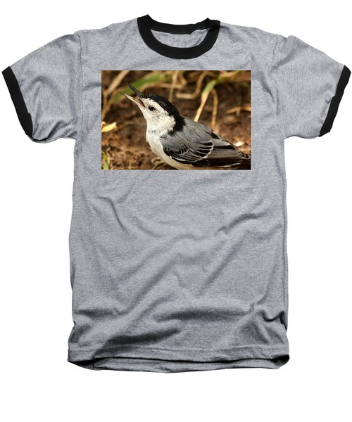 White Breasted Nuthatch 2 Baseball T-Shirt by Sheila Brown