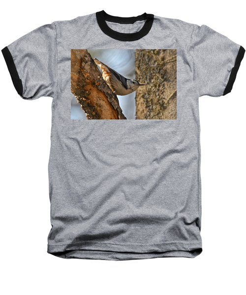 White Breasted Nuthatch 370 Baseball T-Shirt by Michael Peychich