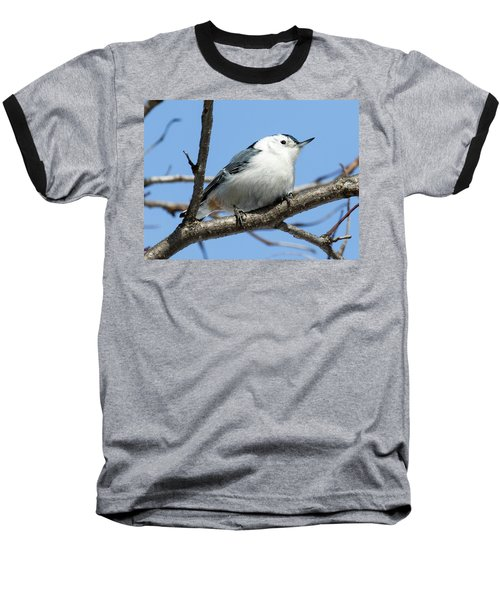 White-breasted Nuthatch Perched Baseball T-Shirt