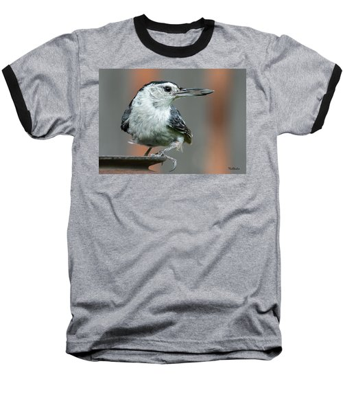 White-breasted Nuthatch With Sunflower Seed Baseball T-Shirt