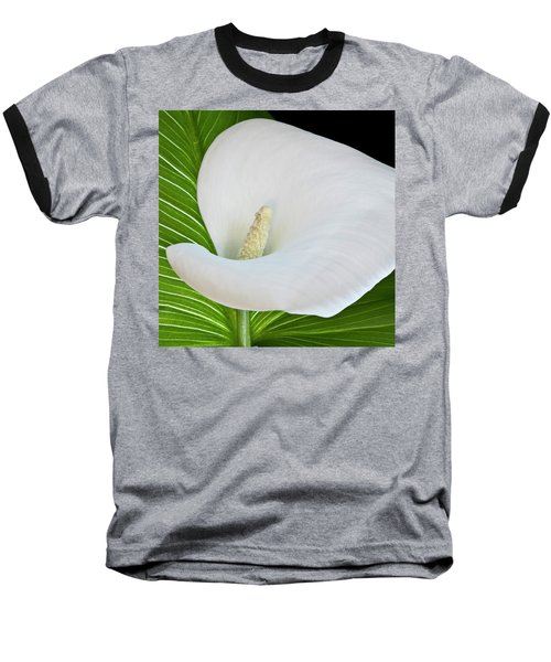 White Calla Baseball T-Shirt