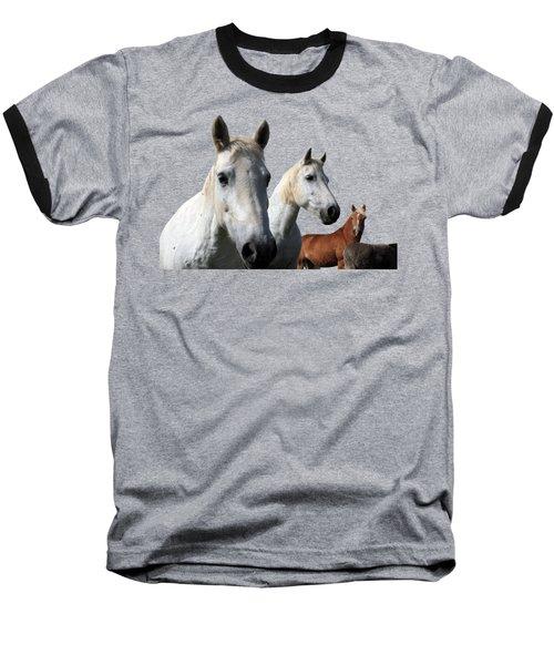 White Camargue Horses On Black Background Baseball T-Shirt