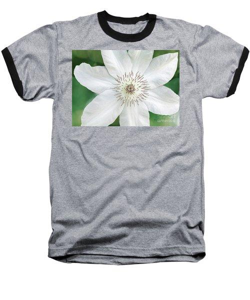 White Clematis Flower Garden 50121 Baseball T-Shirt