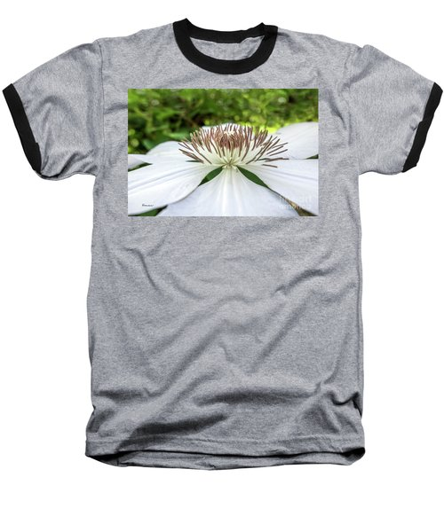 White Clematis Flower Garden 50146 Baseball T-Shirt