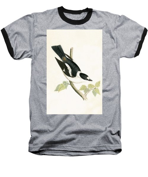 White Collared Flycatcher Baseball T-Shirt