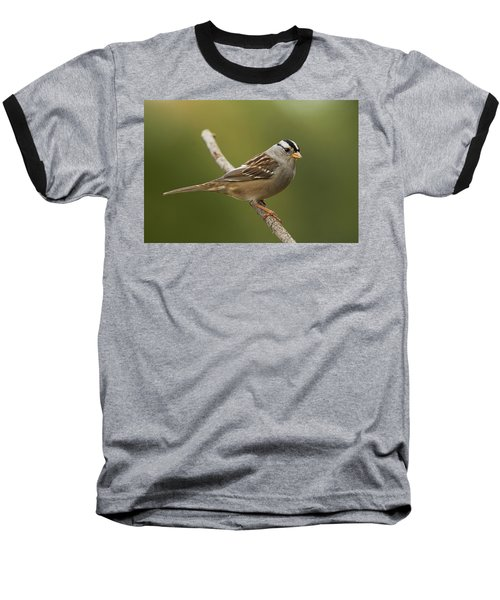 Baseball T-Shirt featuring the photograph White-crowned Sparrow by Doug Herr