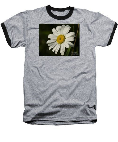 White Daisy Flower Baseball T-Shirt by JT Lewis