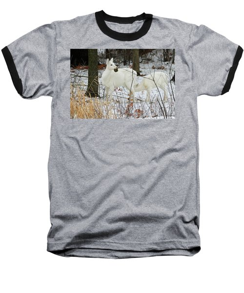 White Deer With Squash 2 Baseball T-Shirt by Brook Burling