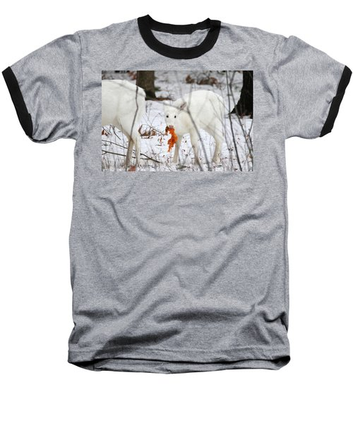 White Deer With Squash 5 Baseball T-Shirt by Brook Burling