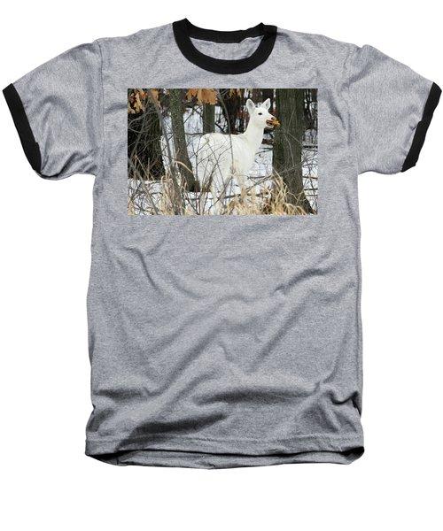 White Doe With Squash Baseball T-Shirt by Brook Burling