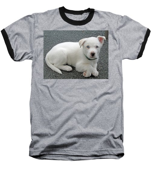White Dog Blue Eyes Baseball T-Shirt