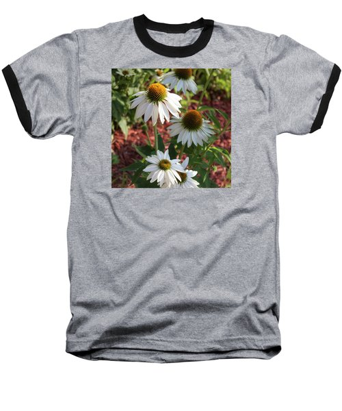 White Echinacea In Pastel Baseball T-Shirt by Suzanne Gaff