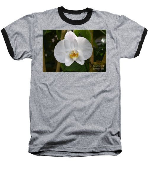 White Flower With Golden Accents Baseball T-Shirt