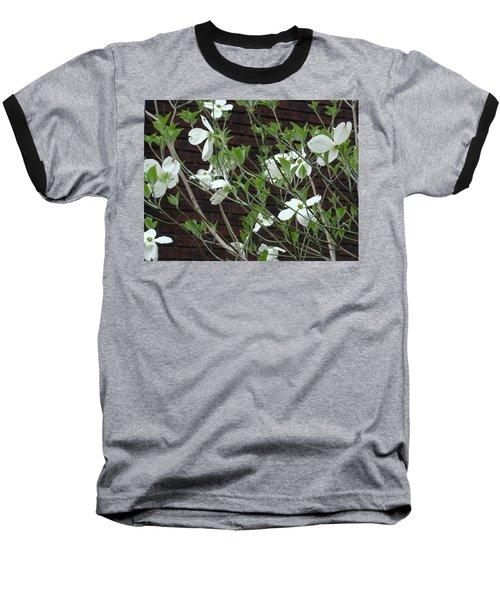White Flowering Dogwood Baseball T-Shirt