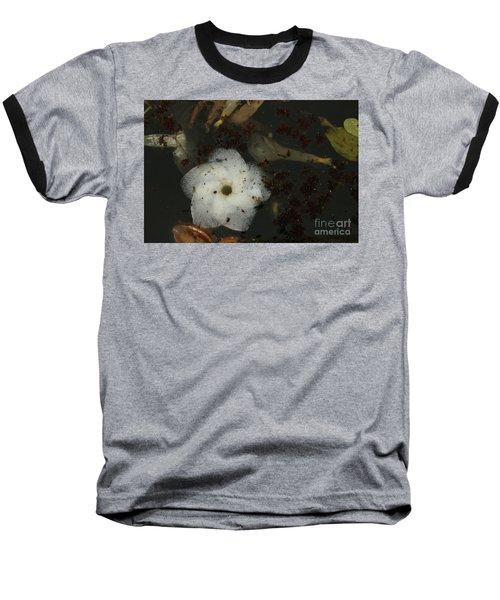 White Hawaiian Flower In The Pond Baseball T-Shirt