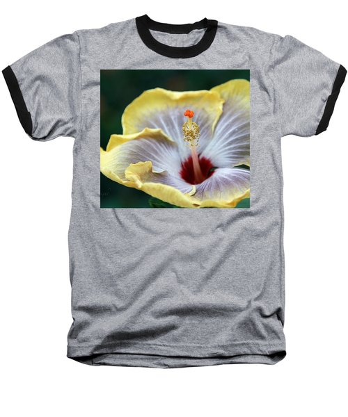 White Hibiscus Baseball T-Shirt by Yvonne Wright