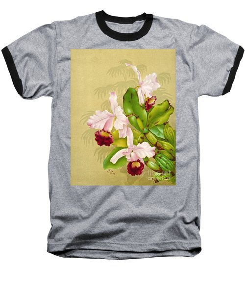 White House Orchid 1892 Baseball T-Shirt by Padre Art