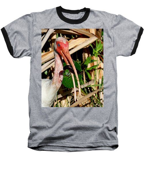 White Ibis Eating Crayfish Baseball T-Shirt