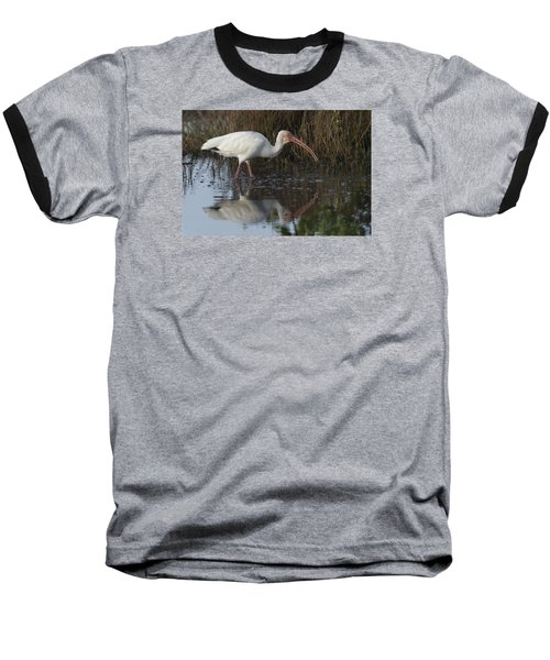 White Ibis Feeding Baseball T-Shirt