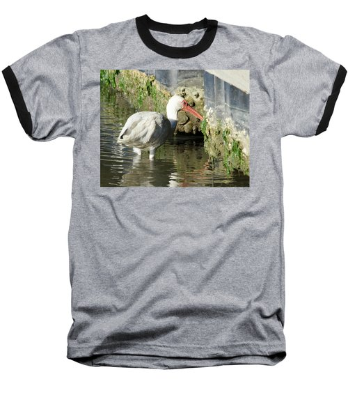 Baseball T-Shirt featuring the photograph White Ibis Headed Home by George Randy Bass