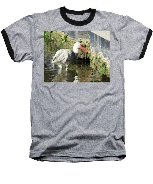 White Ibis Headed Home Baseball T-Shirt by George Randy Bass