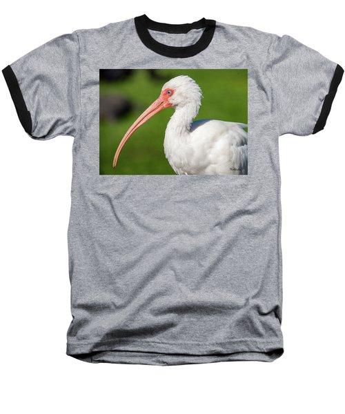 White Ibis Baseball T-Shirt