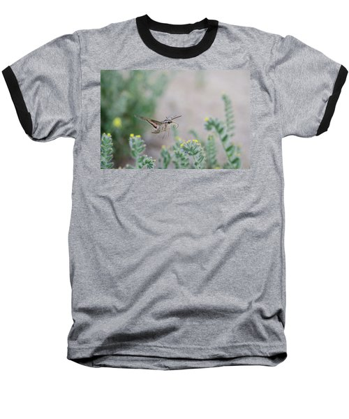 Baseball T-Shirt featuring the photograph White Lined Sphinx Moth No.2 by Margaret Pitcher