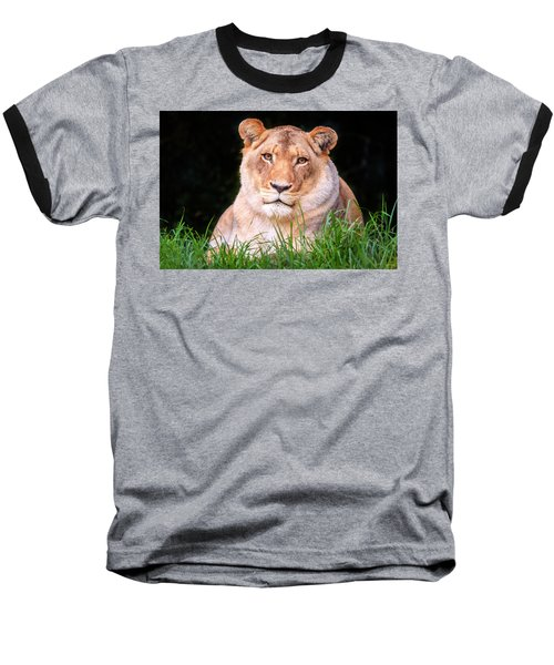Baseball T-Shirt featuring the photograph White Lion by Alexey Stiop