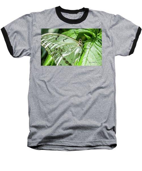 White Morpho Butterfly Baseball T-Shirt