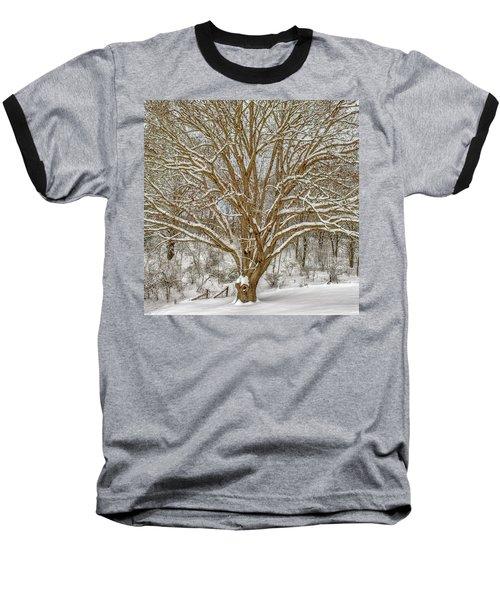 White Oak In Snow Baseball T-Shirt
