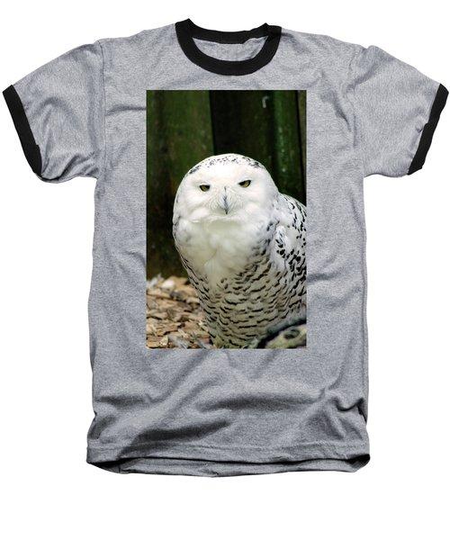 White Owl Baseball T-Shirt