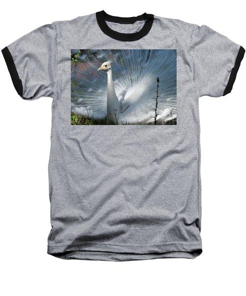 White Peacock Baseball T-Shirt by Lamarre Labadie