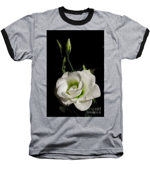 White Rose On Black Baseball T-Shirt