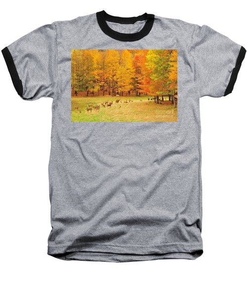 White Tail Deer Herd Baseball T-Shirt