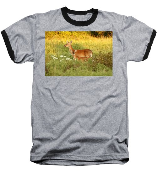 White-tail Doe And Fawn In Meadow Baseball T-Shirt