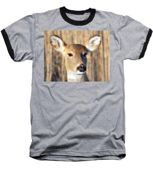 White-tailed Deer Baseball T-Shirt by Diane Giurco