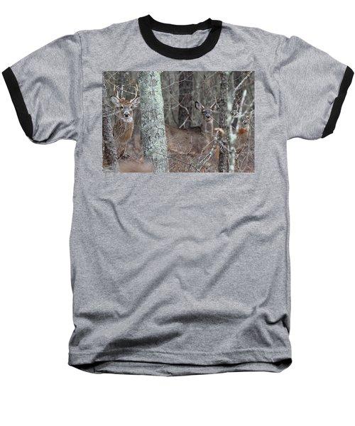 White Tailed Deer Smithtown New York Baseball T-Shirt