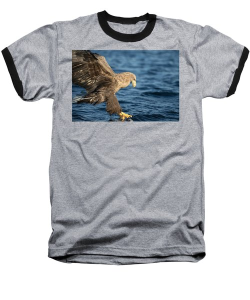 White-tailed Eagle Hunting Baseball T-Shirt