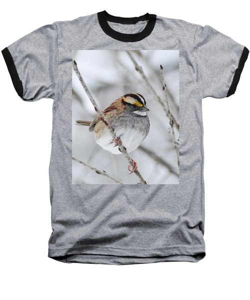 White Throated Sparrow Baseball T-Shirt