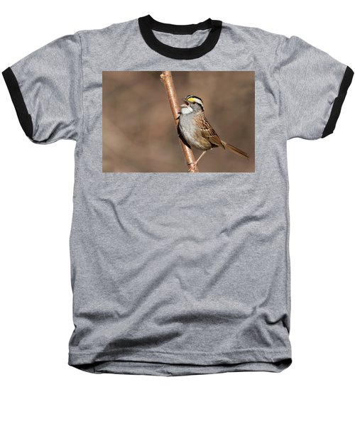 Baseball T-Shirt featuring the photograph White-throated Sparrow by Mircea Costina Photography