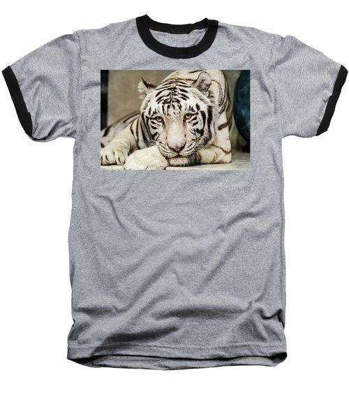 White Tiger Looking At You Baseball T-Shirt