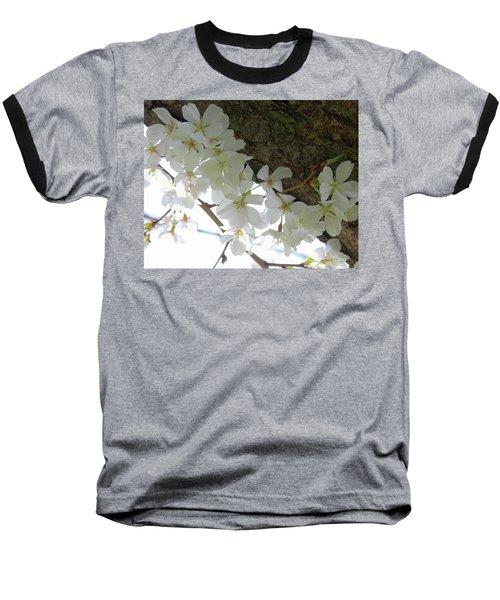Dogwood Branch Baseball T-Shirt