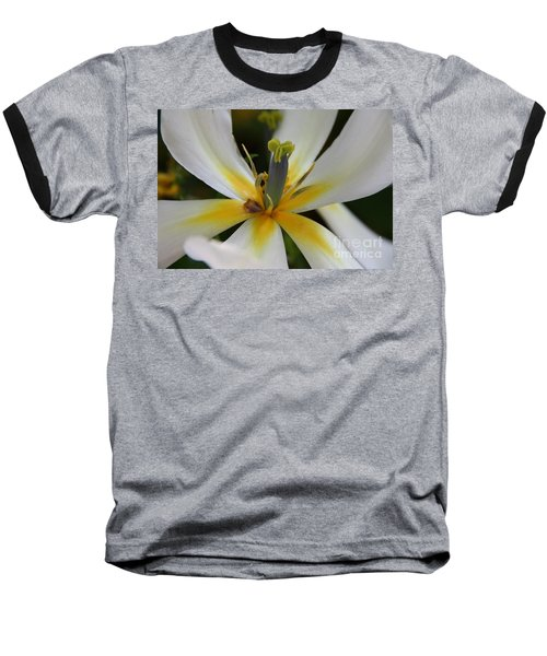 Baseball T-Shirt featuring the photograph White Tulip by Jolanta Anna Karolska