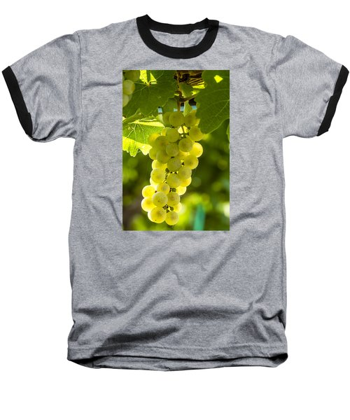 White Wine Grapes Lit By The Sun Baseball T-Shirt by Teri Virbickis
