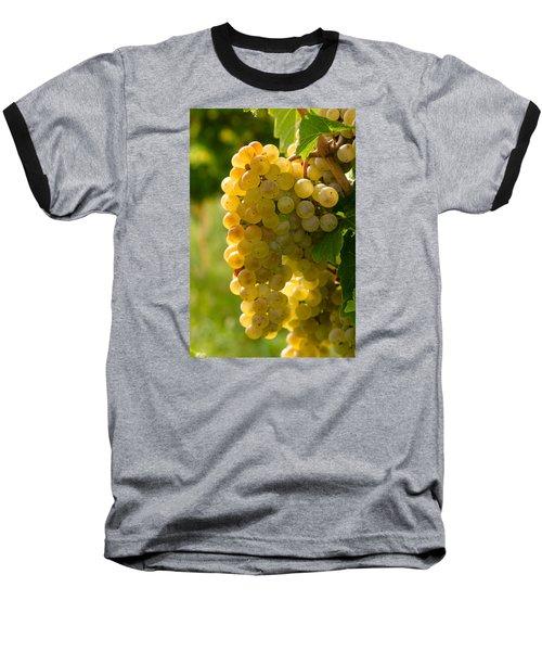 White Wine Grapes Baseball T-Shirt by Teri Virbickis