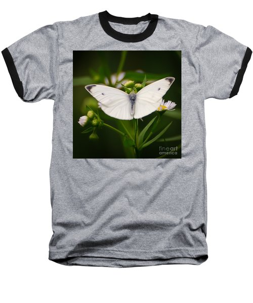 White Wings Of Wonder Baseball T-Shirt by Kerri Farley